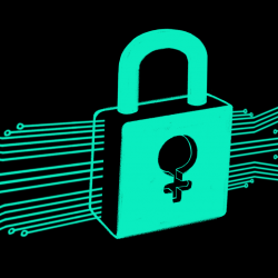 Buscando a las mujeres en el Plan Nacional de Ciberseguridad