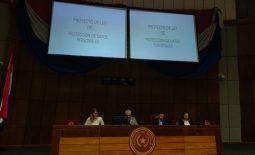una mujer y tres hombres sentados en el estrado de la cámara de senadores