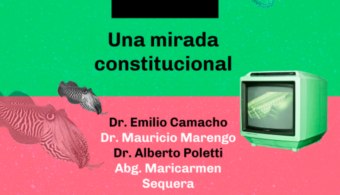Flyer_webinarlanzamientovotoelectrónico