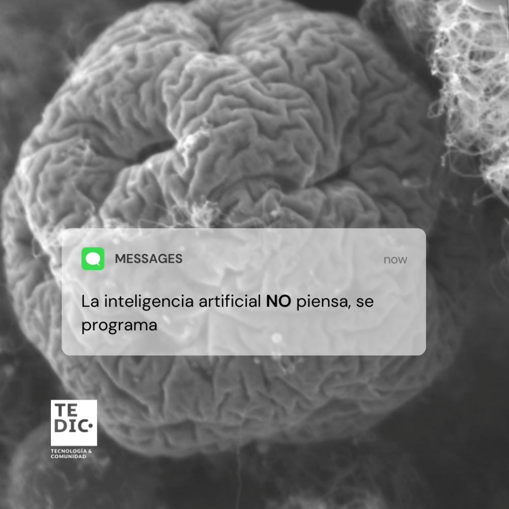 AI redes 2